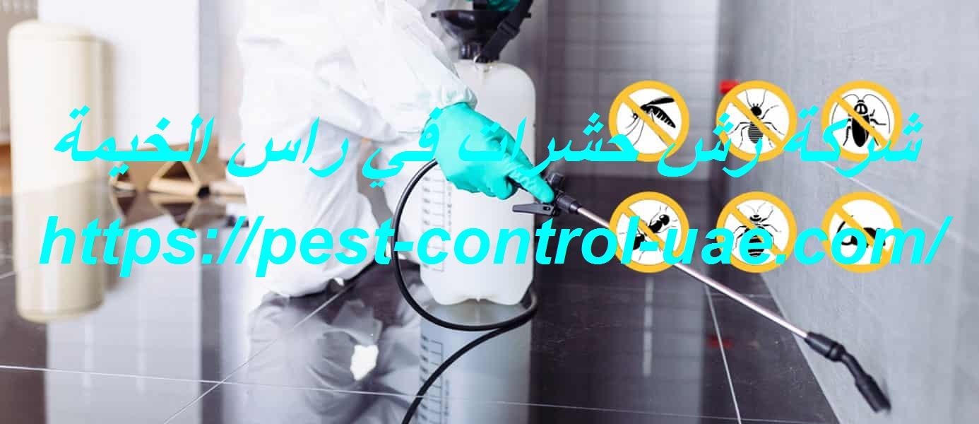 شركة رش حشرات في راس الخيمة